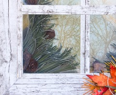 Autumn Window (1 of 3)